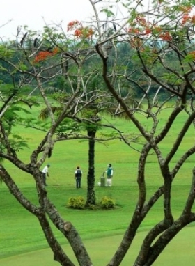 Canlubang Golf Course Golfers