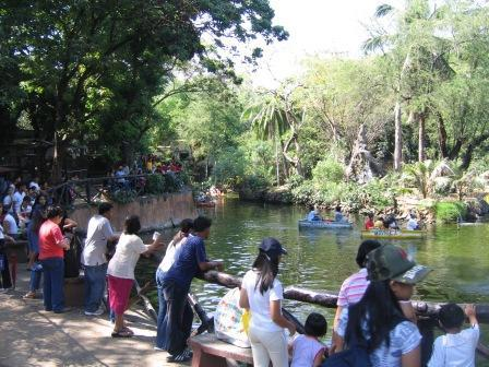 What is there to see in the Manila Zoo?